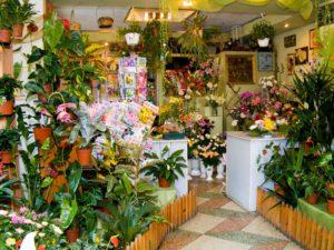 бизнес-план по цветочному магазину