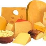 Изготовление сыра как бизнес