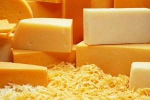 Актуальные бизнес-идеи: производство сыра