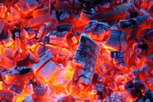Идея для предпринимателей: производство древесного угля как бизнес