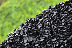 Древесный уголь: как заработать на его производстве?