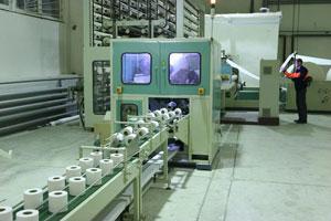 Производство и сбыт туалетной бумаги как бизнес