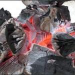Как заработать на изготовлении древесного угля?