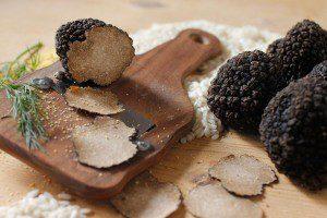 Выращивание трюфеля в домашних условиях как бизнес на грибах